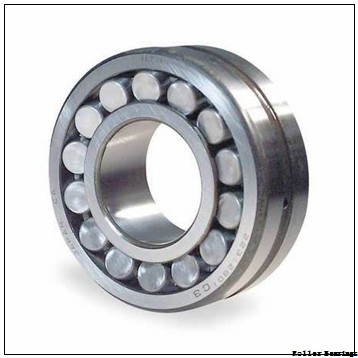 85 mm x 130 mm x 22 mm  FAG N1017-K-M1-SP  Roller Bearings